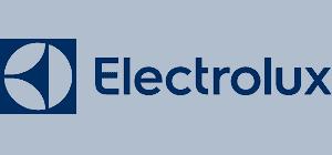 Electrolux repair