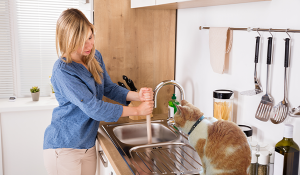 what shouldn't go in a garbage disposal